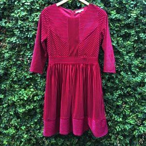 Raspberry Velvet A Line Dress
